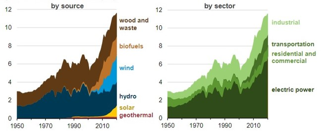 Renewable Energy Consumption